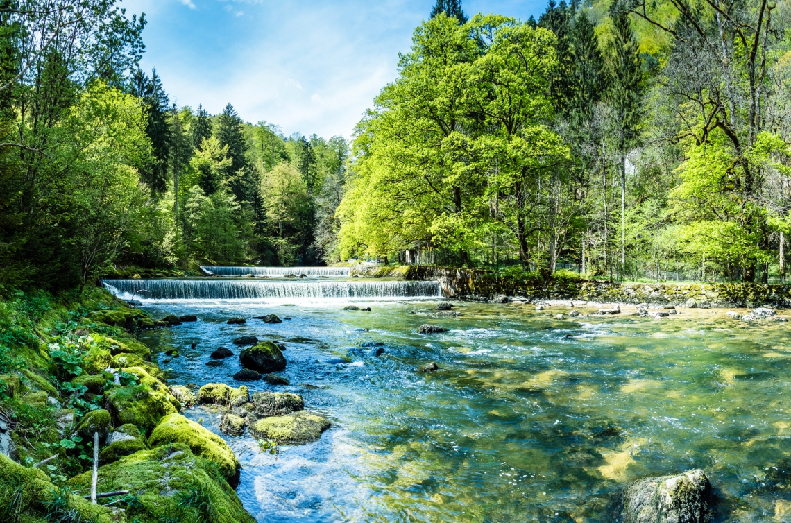 Saubere Natur Fluss im Wald